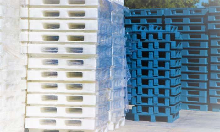 Pallets de Plástico